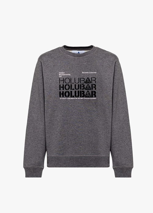 HOLUBAR: TRIPLE H BF12 GRAY SWEATSHIRT
